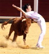 La recortadores Rocío Pulido ejecutando un ajustado recorte frente a una vaca