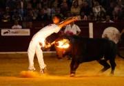 Un especialista ejecutando un ajustado recorte a un toro embolado a fuego | Foto: Alberto Barrios