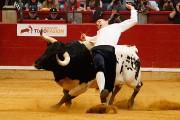 Emoción y espectáculo asegurado en la Final del Campeonato de España