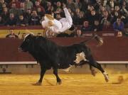 Nicolas volando sobre el temido toro Ratón