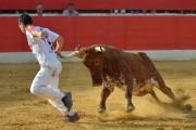 La emoción de las anillas regresa a Castellón con un cartel de lujo
