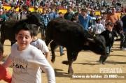 Los niños podrán correr un encierro de búfalos indios sin ningún riesgo. Foto: Blas Pardo.