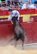 El recortador Mario González frente a una vaca de Hnos. Ozcoz. Foto: www.festejospopulares.net
