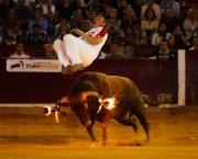Varios especialistas de Toropasión animarán el evento con quiebros y saltos. Foto: Alberto Barrios