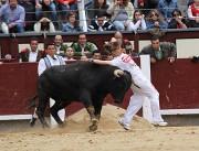 Coral Mota recortando en la plaza de toros de Las Ventas.