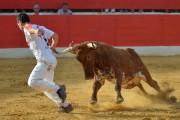 Zaragoza se convierte en el concurso más emocionante del año. Foto: Alberto Barrios