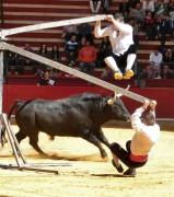 La arriesgada suerte del balancín se realizará con un espectacular toro. Foto: Blas Pardo