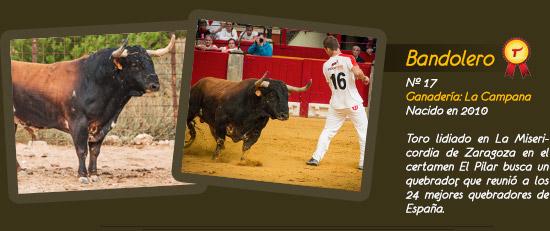 Toro Bandolero, ganadería de La Campana