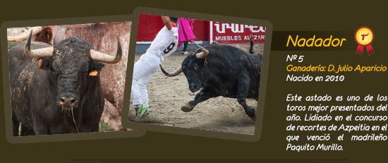 Toro Limonero, ganadería D. Julio Aparicio