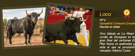 Toro Chiflado, ganadería de Corbacho Grande