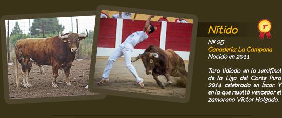 Toro Nítido, ganadería de la Campana