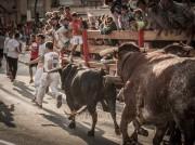 Preciosas las carreras de algunos mozos ante los astados. Foto: Carmen Meroño.