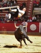 Un especialista ejecuta la suerte del balancín. Foto: Blas Pardo.