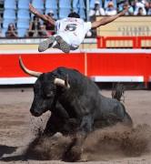 El logroñés Sergio Urruticoechea realizando un gran salto del ángel. Foto: Alberto Barrios.
