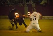 El concurso de recortes con toros embolados a fuego ofreció momentos espectaculares.