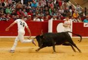 Emoción y riesgo son las bases del concurso nacional de anillas de Zaragoza. Foto: Alberto Barrios.