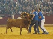 Los roscaderos estarán representados por la cuadrilla de Cabañas de Ebro.