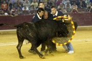 La cuadrilla de Cabañas de Ebro, una de las más veteranas y aplaudidas del circuito. Foto: Alberto Barrios.