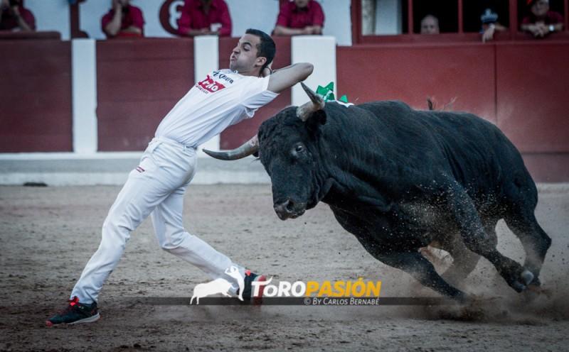 La magia del corte castellano regresará a Arévalo con los mejores cortadores del momento.