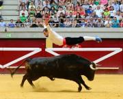 El logroñés Sergio Urruticoechea realizando un salto del ángel ante un espectacular toro. Foto: Eduardo del Campo.
