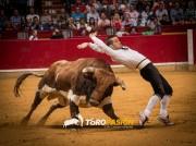 Los arriesgados cortes de Dany Alonso cautivarán a la afición alavesa. Foto: Carmen Meroño.