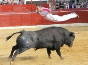 Los saltos pondrán el colofón a la competición.