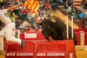 Los toros de Arriazu causan verdadero furor en la plaza. Foto: Toropasión.