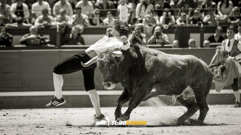 Rubén Fernández 'Cuatio' regresó a Las Ventas con ganas de triunfo. Foto: Carlos Bernabé.
