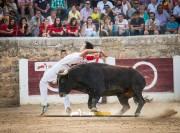 La élite del toreo a cuerpo limpio se dará cita en Medina de Rioseco.