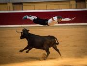 Los recortadores riojanos demostrarán sus cualidades en una competición frente a 3 vacas de Toropasión.