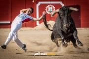 Rivalidad máxima y puro espectáculo ofrece el Campeonato de España.