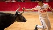 El concurso de anillas más exigente de España volverá a La Misericordia.