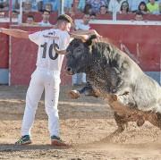 Los reyes de las calles se enfrentarán a las vacas de corro más famosas del momento. Foto: Rafa Laguna.