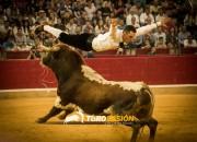 La final del Campeonato de España de recorte libre, una garantía de espectáculo para el 12 de octubre. Foto: Carmen Meroño.
