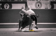 Castaño ejecutando un espectacular recorte previo a su percance. Foto: Toropasión.
