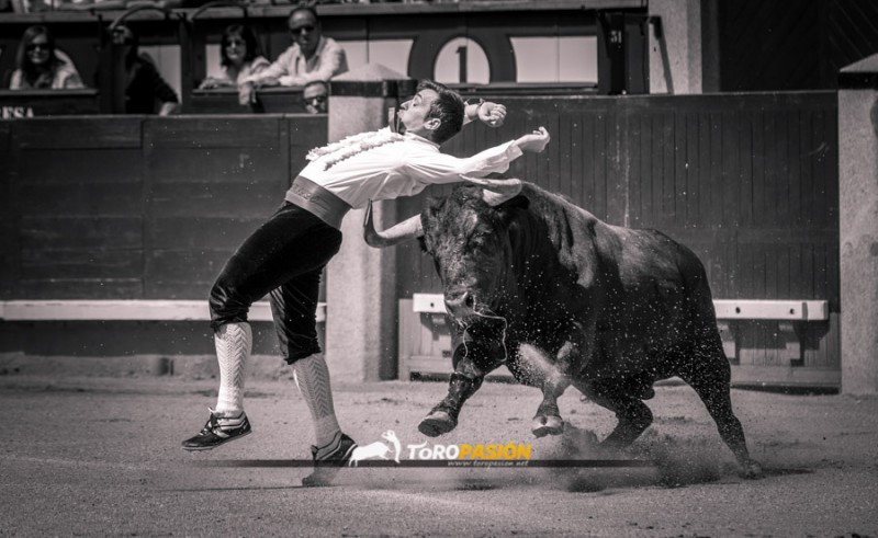 José Manuel Medina, que no pudo pasar a la final, ejecutando un ajustado recorte. Foto: Toropasión.