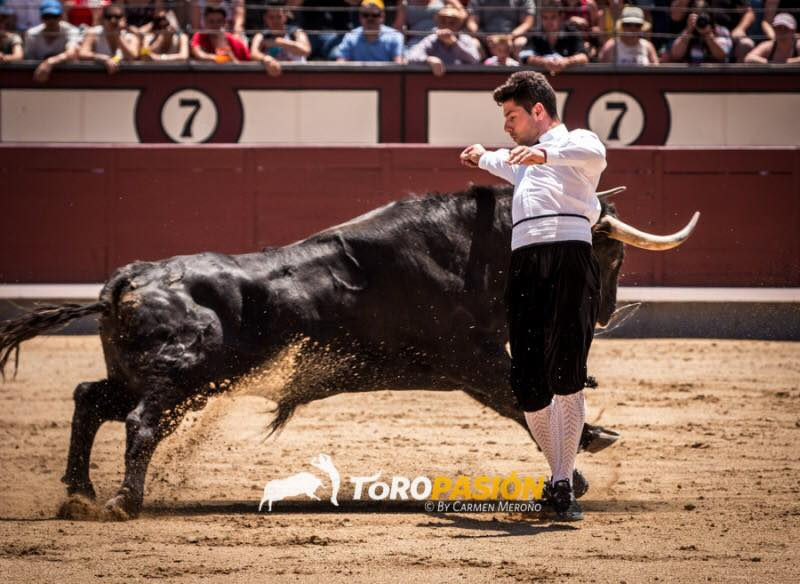 """José Manuel González """"Poca"""", vencedor de Valencia y Castellón deleitará a los aficionados con sus ajustados quiebros."""