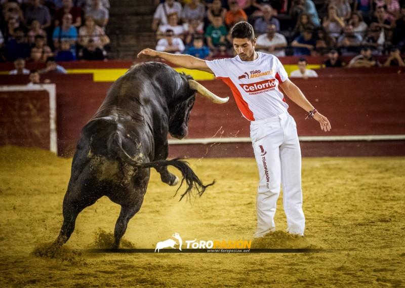 """El vencedor de Castellón y Valencia, José Manuel González """"Poca"""" deleitará a los aficionados con sus quiebros."""