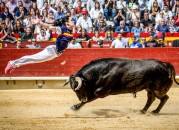 La recortadora Sara Ávila ejecutando un espectacular salto del ángel en Castellón.