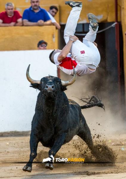 """Eusebio Sacristán """"Use"""" recibiendo a porta gayola a un espectacular toro."""