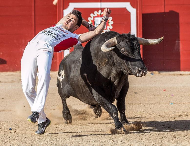 """El bicampeón de España, Jonatan Estébanez """"Peta"""", hará gala de valor y torería sobre el albero."""