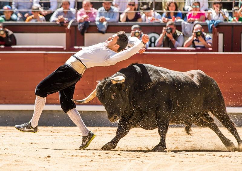La emoción está servida en Salamanca de la mano de los mejores especialistas del momento.