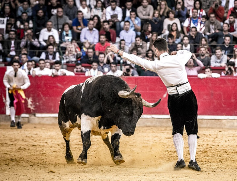 La final del Campeonato de España de recorte libre volverá a ser uno de los festejos estrella de la Feria del Pilar.