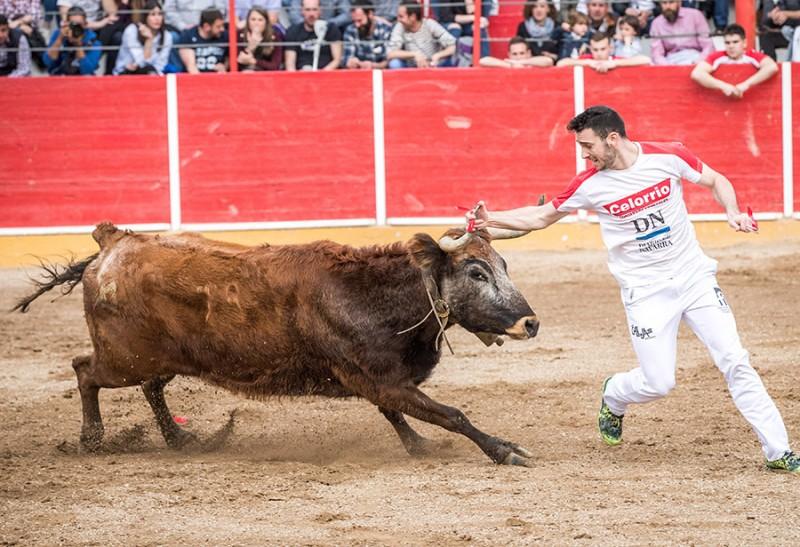 Roberto Constanza regresa a La Misericordia en un gran momento, tras su lesión del año pasado en esta misma plaza.