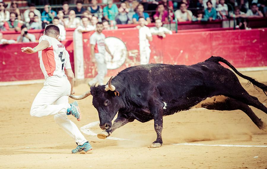 Mario González y Kimera se enfrentarán a la temida vaca Quitasueños de Hnos. Ozcoz.