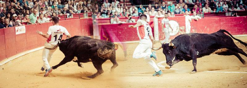 Mario González en apuros con la temida vaca Quitasueños
