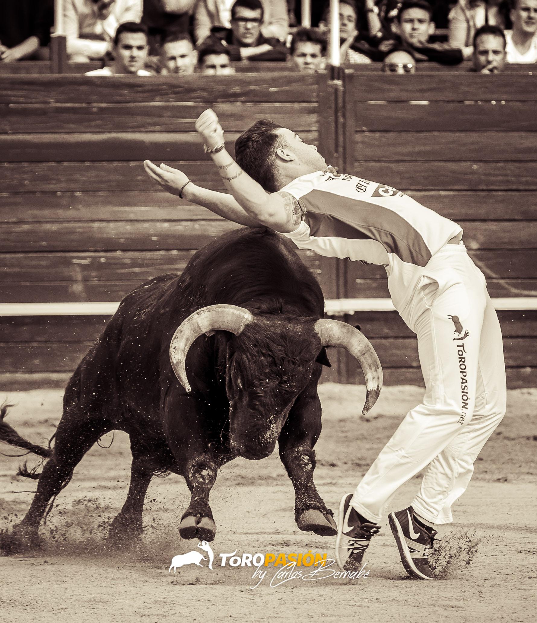 Solo los mejores toreros a cuerpo limpio estarán en Rueda.