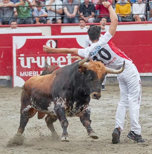 El espectáculo está garantizado en la plaza de toros de Azpeitia. Foto: Rafa Laguna.
