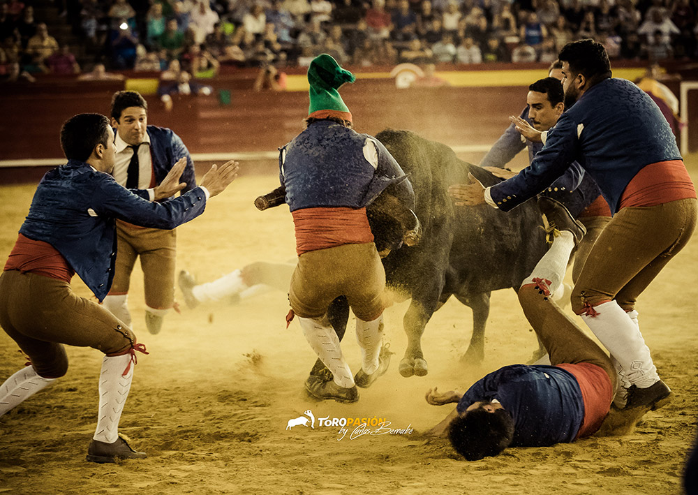 Los forcados, una de las suertes más épicas de enfrentarse a un toro.