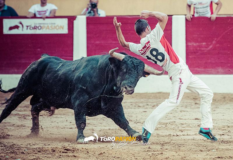 Esta fase de la Liga Toropasión reunirá a algunos de los mejores toreros a cuerpo limpio del momento.